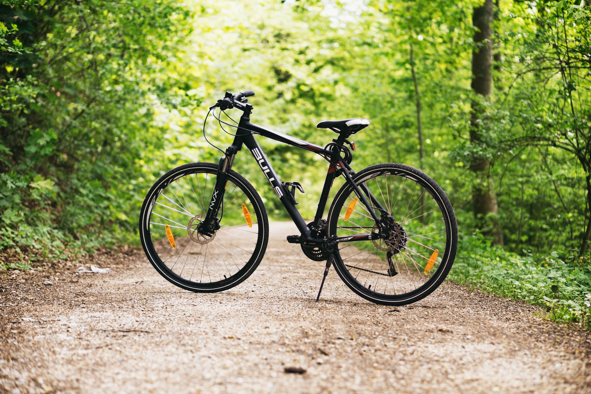 black and white hardtail bike on brown road between trees